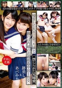 AVOP-378 –  My Sister And Parents Met After A Long Absence With My Parents* Incest Incest Cumsome Sexual Intercourse Marksmith & Bamboo